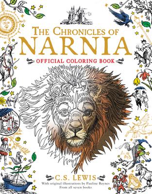Activity Books Children Fiction