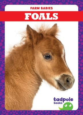 Animals - Farm Animals( Children NonFiction ) - OpenTrolley