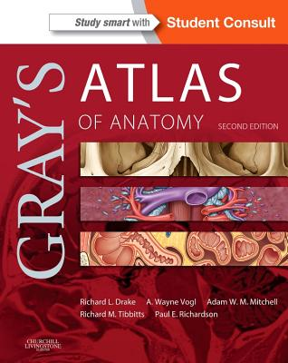 Grays Anatomy Review With Student Consult Online Access By Loukas